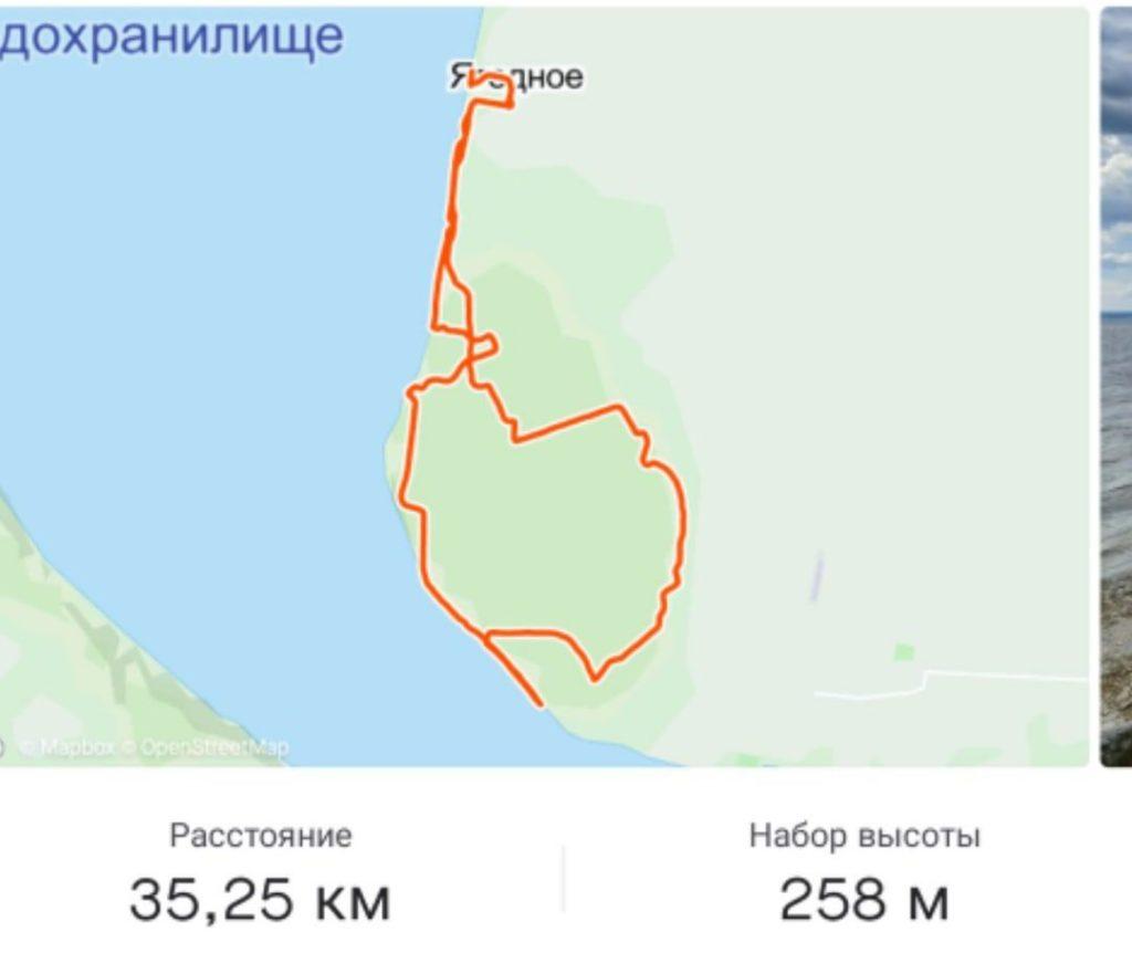 Достопримечательности Самарской области - Ягодинский лес